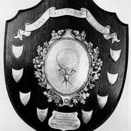 TrophyDartsCompetitionShield